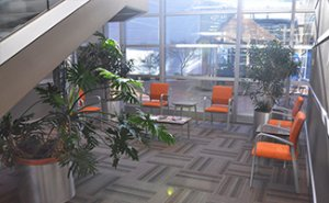 Our visitor waiting area provides an inviting, comfortable area for your visitors